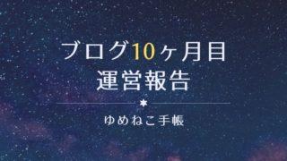 ブログ10ヶ月目 運営報告