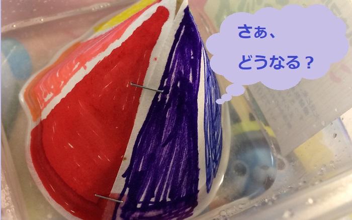 ダイソー実験キット「結晶をつくろう!」